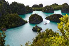 Here's a fun fact about Indonesia – it's home to over 18,000 islands, over half of which are populated. And that's not just a fun fact, that's one of the reasons why organizing a cruise where you visit everything that's worth visiting is actually more difficult than you'd think. But fret not, because we've got […] The post Cruising Indonesia – The Best Destinations to Visit appeared first on Freedom Wall. Raja Ampat Islands, Maluku Islands, Shark Diving, Scuba Diving, Largest Sea Turtle, Freedom Wall, Komodo Island, Island Resort, Underwater World