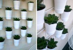 insitu wall planter 2