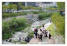 revitalização rio - Seul