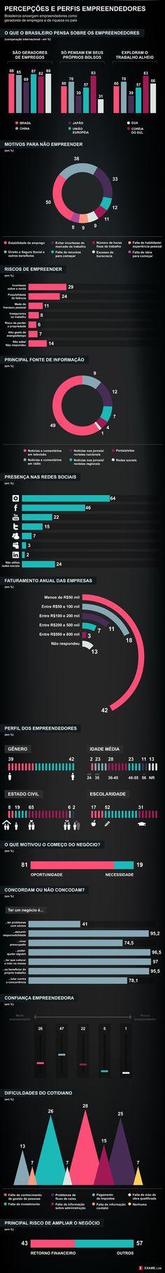As visões e os perfis dos empreendedores brasileiros
