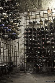 more than 100 yr. old wine cellar underneath a new home
