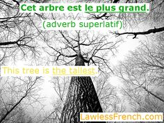 The very bestest lesson on French superlatives - http://lklawl.es/1lRXP04