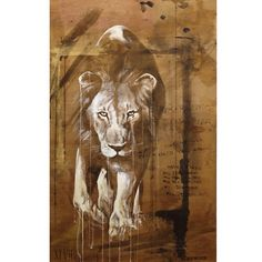 'Hunger' Ink, acrylic and spraypaint on wood. 76 cm x 122 cm. Spray Painting, Graffiti, Street Art, Moose Art, Lion Sculpture, Ink, Statue, Wood, Tired