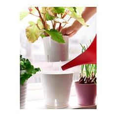 1000 images about indoor planter wall on pinterest for Indoor wall planters ikea