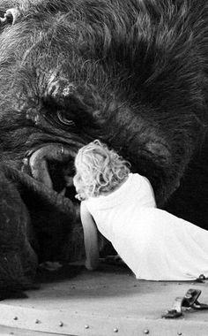 """En el barco en el que los protagonistas llegan la Isla de la Calavera, en la bodega donde están las jaulas de los animales hay una que pone """"Sumatra Monkey Rat"""", que es el bicho responsable de la plaga de zombies de la película de Peter Jackson """"Braindead (tu madre se ha comido a mi perro)""""."""