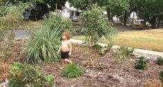 Jamnee's Blog: Back to Eden Garden in Kansas City, Kansas
