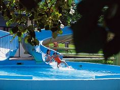 It is not only the medicinal water that has its spontaneous effect at the thermal baths at Harkány. The natural conditions are excellent: the favourable climate, the micro-climate of the spa, the. Thermal Baths, Hungary, Budapest, Spa, Water, Outdoor Decor, Gripe Water, Aqua