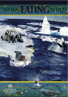 'Who's eating who?' Downloadable book about Antarctic food chain