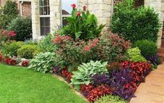 Add some good front yard plants with color, height, and texture that pleases the eye. There are several choices of front yard plants. Outdoor Landscaping, Front Yard Landscaping, Outdoor Gardens, Ranch House Landscaping, Canna Lily Landscaping, Corner Landscaping Ideas, Mulch Ideas, Landscaping Blocks, Acreage Landscaping