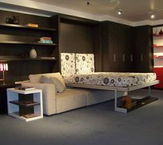 murphy bed - I have a small fascination with murphy beds. I've always wanted one.