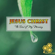 Today's honey🍯 November 2018 The Dew of the Morning To Israel, the dew was a very important part of their life and culture. Living in desert lands,. Todays Devotion, Daily Devotional, Honeycomb, Jesus Christ, Israel, Prayers, Rain, Facts, Blessing