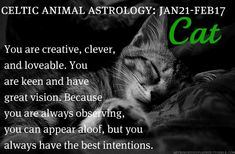 Celtic Animal Astrology: Cat (January 21- February 17)