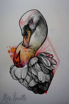 Swan illustration by Miss Sucette