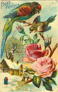 Com os melhores desejos. Cartão postal. Foi enviado em 11 de abril de 1910 de um pai para seu filho, que estava em Fort Terry no estado de Nova Iorque.  Fotografia: Brian Bowrin no Flickr.