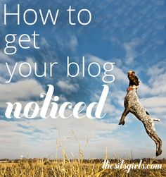 From focusing your content to having a great blog design, these tips will help you get your blog noticed in the crowded online space.