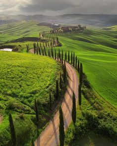 Italian countryside Tuscany pines in Va d'Orcia, Italy photo by ( Wonderful Places, Beautiful Places, Nature Photography, Travel Photography, Landscape Photography, Destination Voyage, Visit Italy, Tuscany Italy, Italy Italy