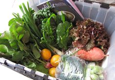 Spring CSA box ideas