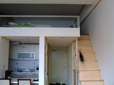 Loft (bedroom)and stairs
