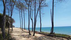 On the way - Praia do Trafal (Quarteira) - Portugal