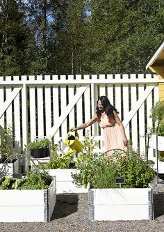 Ellen Jokikunnas toteutti puutarhaunelmansa
