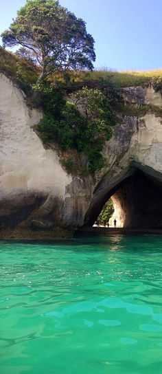 Cathedral Cove near Hahei, Coromandel, North Island, New Zealand