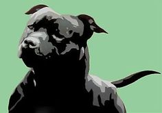 Black Staffordshire Bull Terrier Green Dog Painting Art Poster A3 | eBay