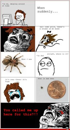 I had that happen to me the other day.  I was watching a movie in the REC room and this big spider climbed out from behind the cabinet. I was did not posses a shoe at the time so i naturally went and asked my wonderful father to kill it for me.  He laughed when he saw it and called me a chicken.