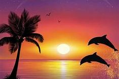 atardeceres espectaculares - Yahoo Image Search Results