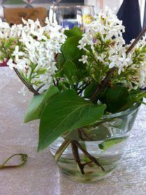 Fru Hansens kreativiteter: Pynting av konfirmasjonsbord :) Plants, Plant, Planets