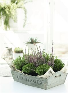 10 Great Ideas for Container Gardening from Julie Bluet's Blog.