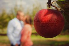 Fall maternity photos in an apple orchard. Focus on an apple with your due date!
