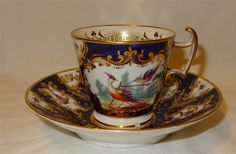 Early 19th Century English Porcelain Bird & Insect Painted Coalport Cup & Saucer