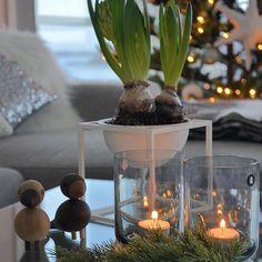 """""""Christmas must be tonight""""🎼 Av The Band på høyttaler i stua og reklamefotografering av diverse produkter📷 Rolig dag og det er godt midt oppi julestria🎄✨ I kveld kommer nest siste premie i Marits Julekalender ut - så følg med!❤️"""