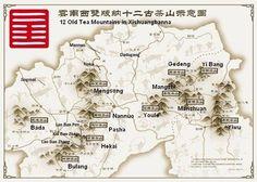 china puerh tea mountains