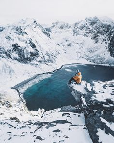 Lofoten- See Instagram photos and videos from max muench | @germanroamers (@muenchmax)