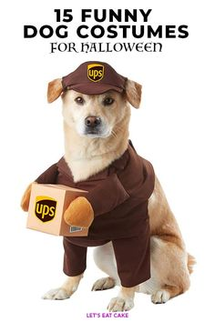 15 Funny Dog Costumes That'll Make Everyone Say Yep You're a Crazy Dog Parent Large Dog Costumes, Cute Dog Costumes, Pet Halloween Costumes, Couple Halloween, Funniest Costumes, Costume Ideas, Woman Costumes, Couple Costumes, Halloween Items