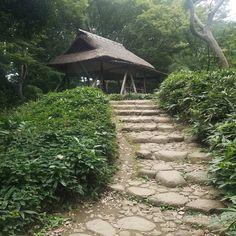 #teahouse on a hill in #rikugien #tokyo. #meiji #meijiera #tsutsujichaya