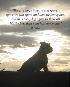 Dog with Quote