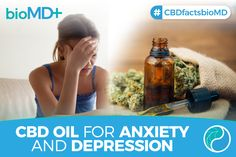 Believe it or not, preclinical information links the use of CBD to reduce General Anxiety Disorder (GAD) and more. Social Anxiety Disorder, Panic Disorder, Stress Disorders, Bipolar Disorder, Stress And Depression, Stress And Anxiety, Perfect Image, Perfect Photo, Love Photos