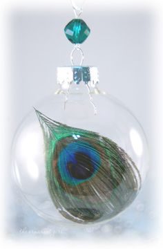 Peacock Feather in Glass Ornament - Beautiful, i will make my own.
