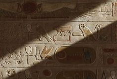 """totenbuch: """" Relief in the Mortuary Temple of Queen Hatshepsut at Deir el-Bahari near Luxor, Egypt. """""""