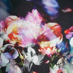 Paul Smith Women's Scarves   Tulip Floral Print Silk Scarf