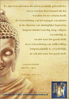 In de new-age is het belangrijk om niet te oordelen. Gek genoeg wordt dit vaak toegeschreven aan Gautama de Boeddha, terwijl deze dit nooit voorgesteld heeft. Sterker; als je de pali-canon leest zie je een man die juist erg veel oordeelde en veroordeelde. Deze quote komt uit zijn allereerste lezing ooit gegeven, een uitspraak welk hij vaker herhaalde. http://www.dharma-lotus.nl/lotuskaarten.asp