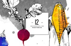 12 Ink Watercolour Vegetables by saimana.com on @creativemarket