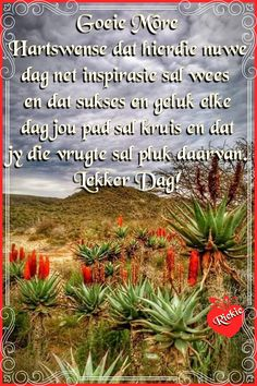 Good Morning Cards, Good Morning Wishes, Morning Greeting, Lekker Dag, Afrikaanse Quotes, Goeie More, Out Of Africa, Prayer Quotes, Morning Quotes