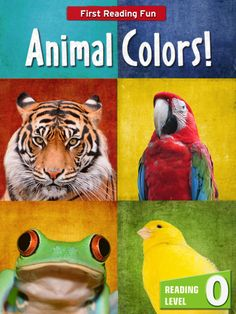 """Animal Colors! Children love animals. What a better way to learn colors than through this Booksy level 0 reader. This book is filled with 13 pages of beautiful photographs.   """"Animal Colors!"""" uses the powerful BOOKSY learning-to-read PLATFORM for young children (4-7). Booksy puts training wheels on books! It's the evolution of leveled readers. It provides tools for parents, as well as motivation and independence for beginning readers."""