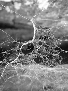 Explore nervous system's photos on Flickr. nervous system has uploaded 5063 photos to Flickr.