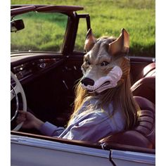 people with animal masks - Google Search