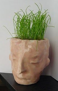This looks really fun- pinchpot faces with soil and grass seed for the hair. Nice science connection possible.