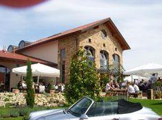 Weingut Holz-Weisbrodt, Weisenheim am Berg - Restaurant Bilder – TripAdvisor